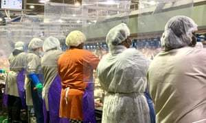 Global report: China suspends US poultry imports from Covid-19-affected business | World news | The Guardian